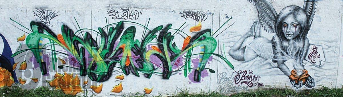 1-portada-TCM-2010-CALI